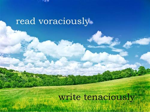 Read voraciously, write tenaciously.