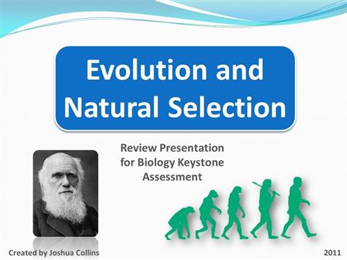 Click here to access the Evolution PowerPoint.