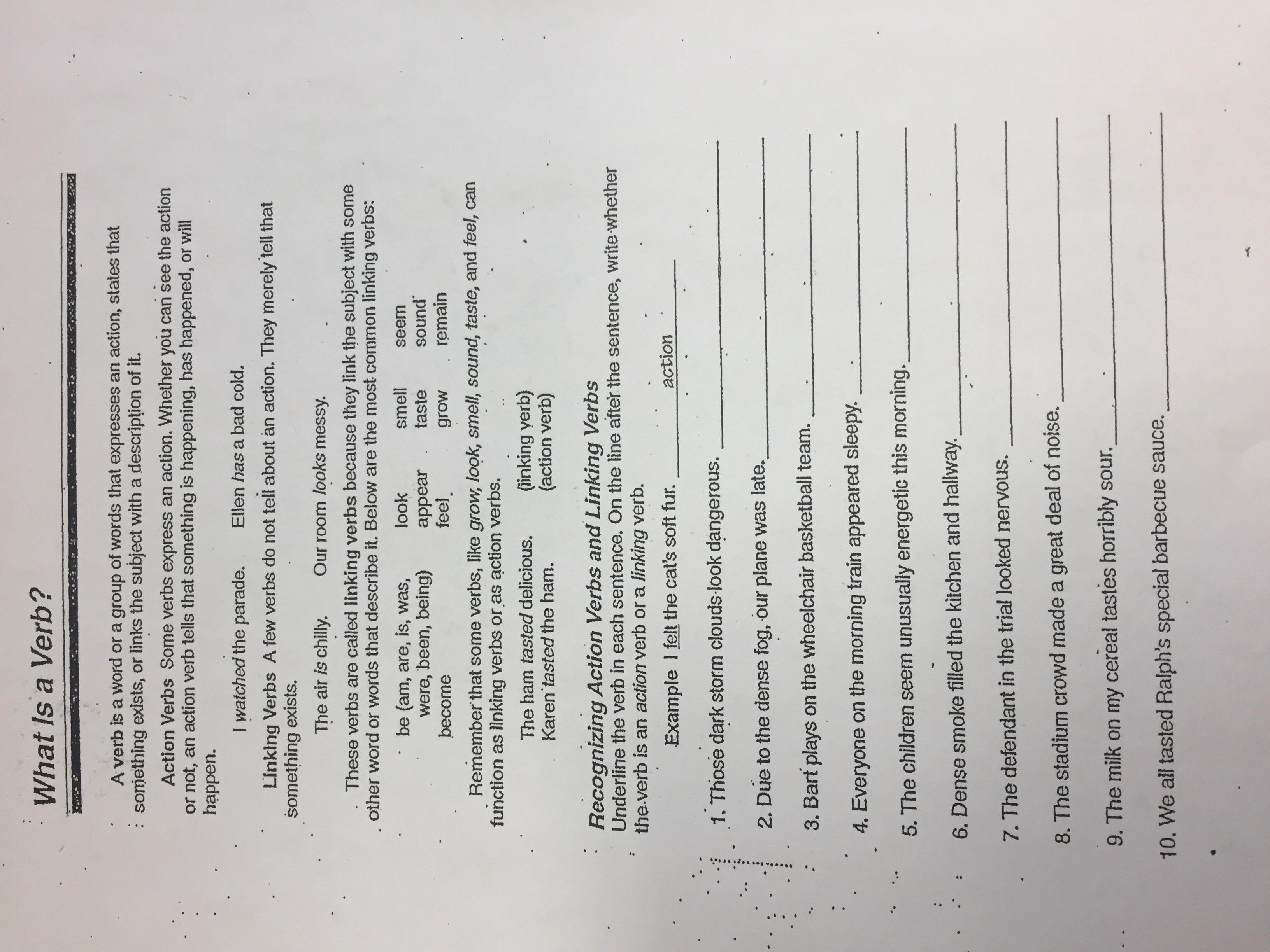 5 paragraph essay high school