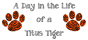 A Day in the Life of a Titus Tiger